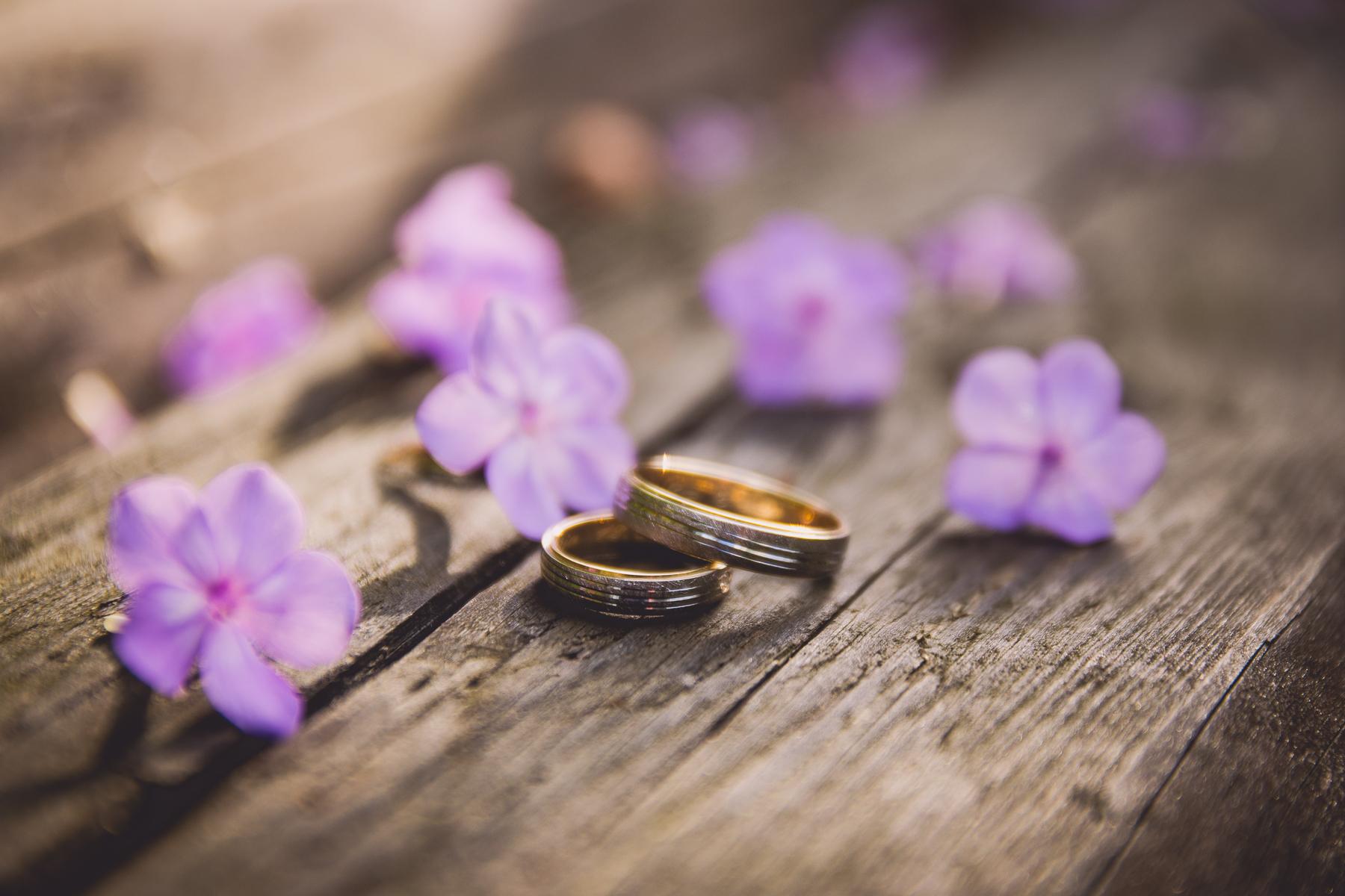 foceni-svatby-jihlava-a-okoli.jpg